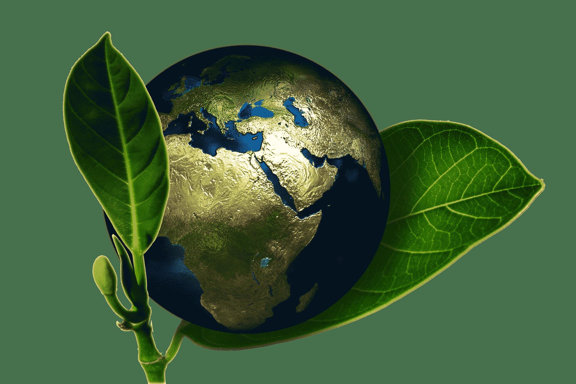 global organic textile standard canvas etc