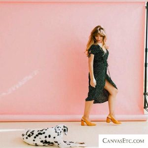 Backdrop for Photoshoot in Any Color