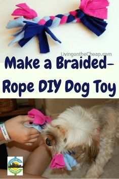 braided-rope-toy-canvas-etc-national-pet-day